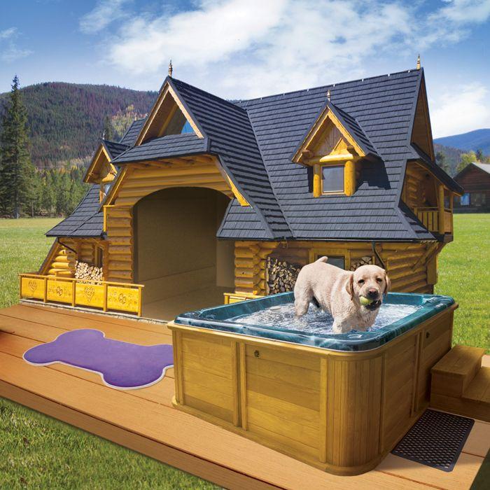 dog home